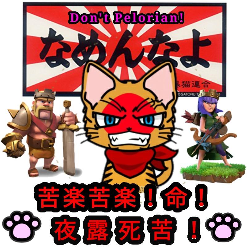 全日本暴猫連合なめんなよ プロフ画像