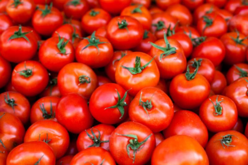 トマトケチャップ プロフ画像